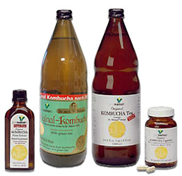 Original Kombucha Tea Dr. Sklenar's Genuine Recipe